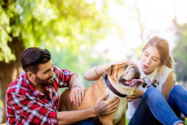 <mark>Acquista</mark> <mark>Giocattolo in Gomma con Suoni per Cani Funny Pet Prior</mark> da casa a prezzi da matti in linea
