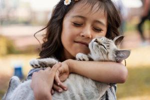 <u>Ciotola Pieghevole di Silicone per Animali Domestici Heart</u>: <ins>Acquista</ins> on-line a un prezzo incredibile  dallo Smartphone
