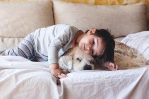 <mark>Guinzaglio per Cani con LED e Buste 5 m</mark> per <strong>Acquista</strong>re on-line con la migliore offerta